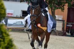 Pferde_Sonstige_Foto_Waldhof_Schulte_Spechtel_002