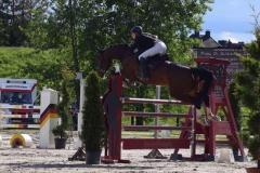 Pferde_Sonstige_Foto_Waldhof_Schulte_Spechtel_013